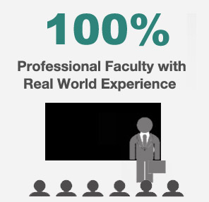 Professional Teaching Faculty